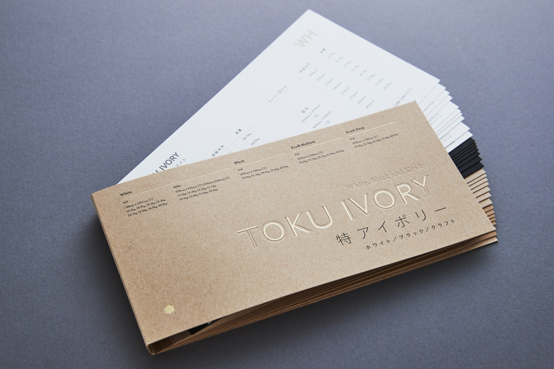 Toku Ivory - Promotion Book 2