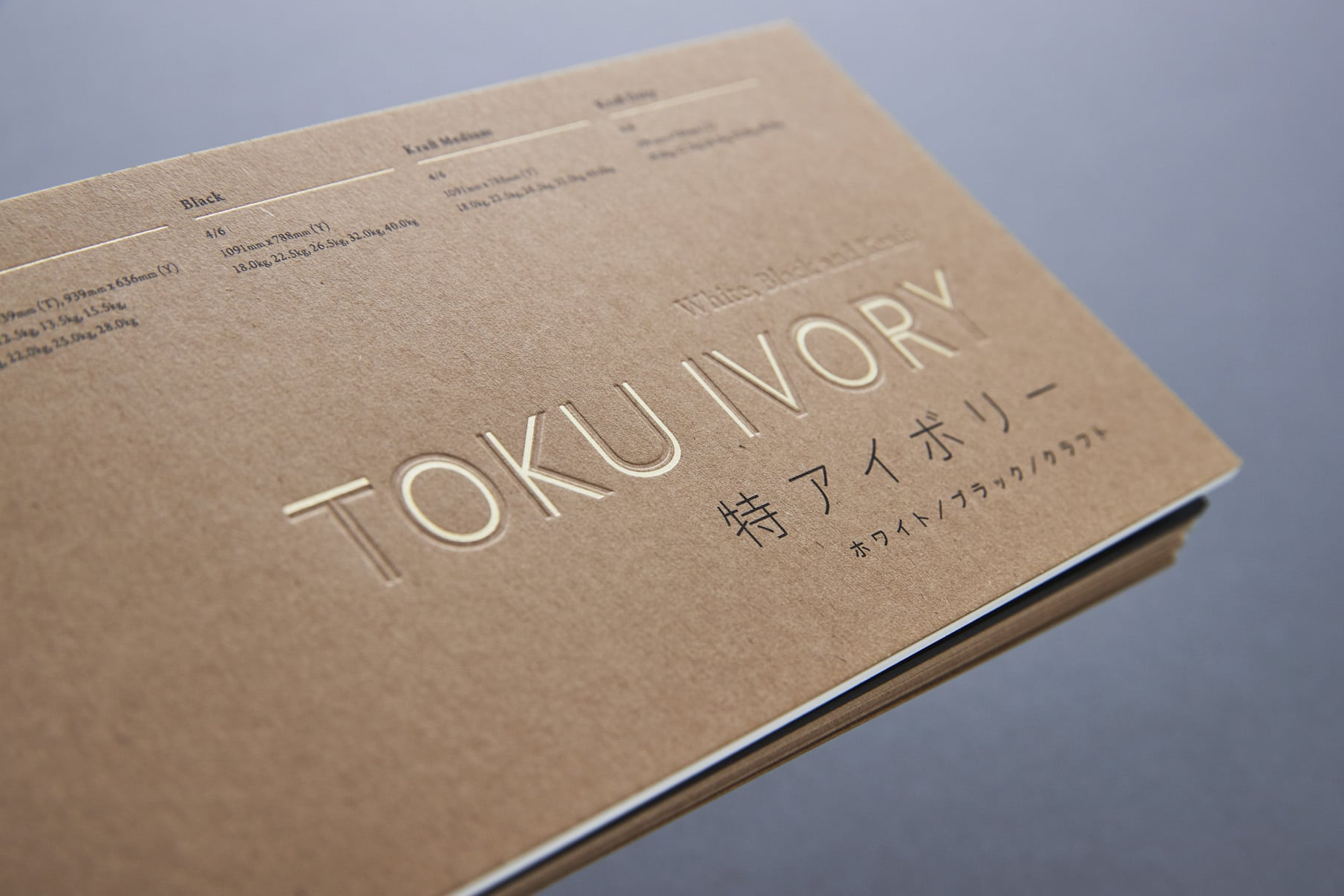 Toku Ivory - Promotion Book 3